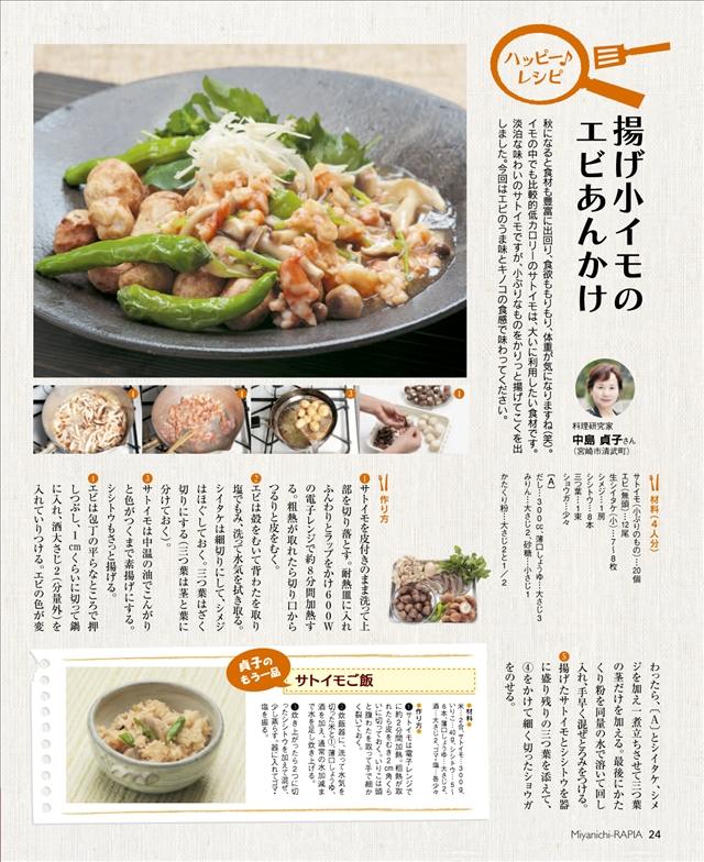201110_11.jpg